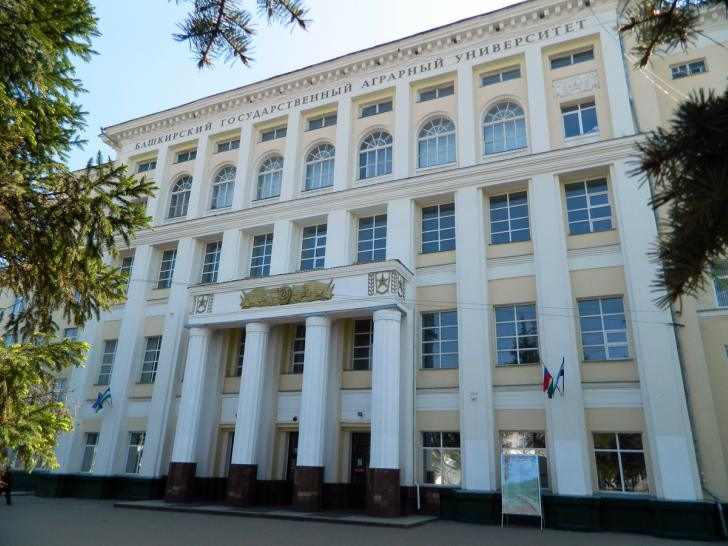 Ученые Башкирского государственного университета получили гранты за свои разработки