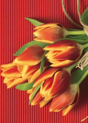 Праздник весны 8 марта. Как поздравить одноклассниц